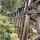 Monbulk Creek Trestle Bridge by Emma Holmes
