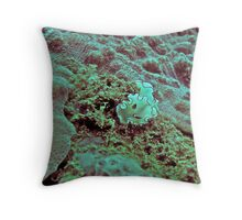 A PLACE IN THIS WORLD Throw Pillow