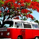 red kombi and Poinciana by Rex Inkpen
