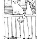 Caty by Stella  Shube As