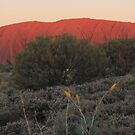 Central Australia by Kymbo
