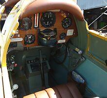 Rear Cockpit - Tiger Moth DH-82A by stevealder