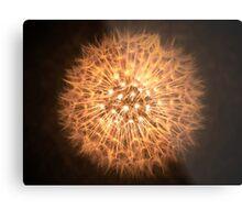 Dandelion Flame Metal Print