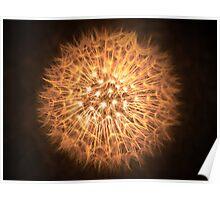 Dandelion Flame Poster