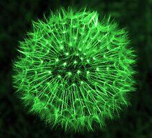 Dandelion Green by DavidWHughes