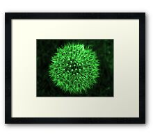 Dandelion Green Framed Print