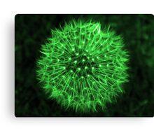 Dandelion Green Canvas Print