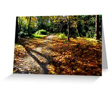 Autumn woodland path. Greeting Card