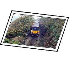 """"""" The most Picturesque rail trip in the UK"""" Photographic Print"""