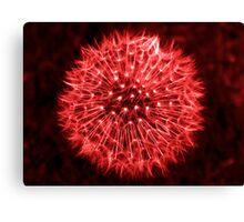 Dandelion Red Canvas Print