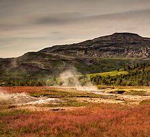 Fields of Geysir - Iceland by YorkStCreative