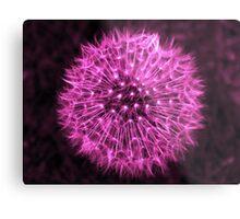 Dandelion Violet Metal Print