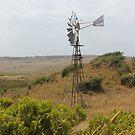 Coastal Farmland by Kymbo