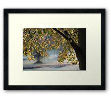Autumn Arch Framed Print