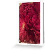 Dark Pink Daisy Greeting Card