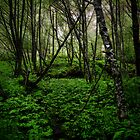 Its A Green World by Charles & Patricia   Harkins ~ Picture Oregon