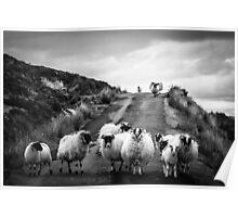 Traffic Jam, Scottish Highlands Poster