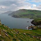Torr Head by Loustalot