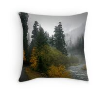 Where The Road Leads You Throw Pillow