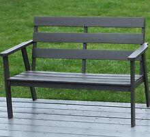 black  bench  by mrivserg