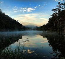 Early Morning View by Carolyn  Fletcher