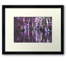 Shady Purple Bayou Framed Print