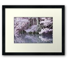 Whimsical Cypress Framed Print