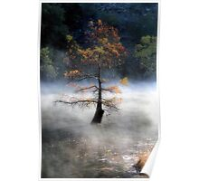 In The Autumn Mist Poster