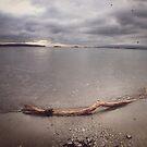 The Great White Ocean by RobertCharles