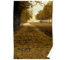 Pathway | Chantilly, France Poster