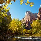 The Virgin River in Zion by Alex Cassels