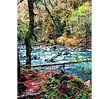 Pacific Northwest Wonderland Photographic Print