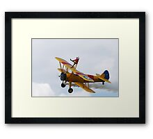 Wingwalker Framed Print