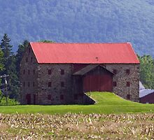 A Most Unusual Loyalsock Barn by Gene Walls
