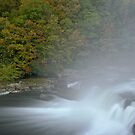 Ohiopyle Falls pre dawn, Autumn 2012 by Paul Kavsak