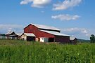 Spring at the Milkin' Barn by Gene Walls