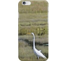 I-Egret iPhone Case/Skin