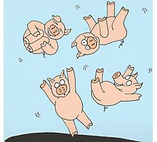 Trampoline Pigs Photographic Print