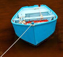 Blue Boat  2012 by Frank Bibbins