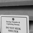 Do Not Seek Shelter by Grace Doble