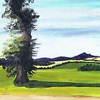 Bennachie from Lochter by ALICE STUART