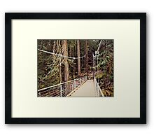 Microbrew Bridge Framed Print