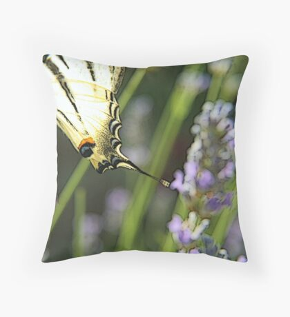 Papillon on lavanda flower Throw Pillow