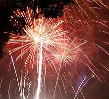 Fireworks, Campbell Park, Milton Keynes by Justin Mitchell