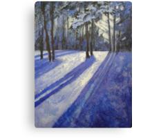 Moonlight Muse Canvas Print
