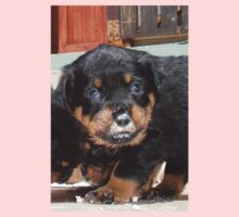 Messy Rottweiler Puppy With Food Covering Nose One Piece - Short Sleeve
