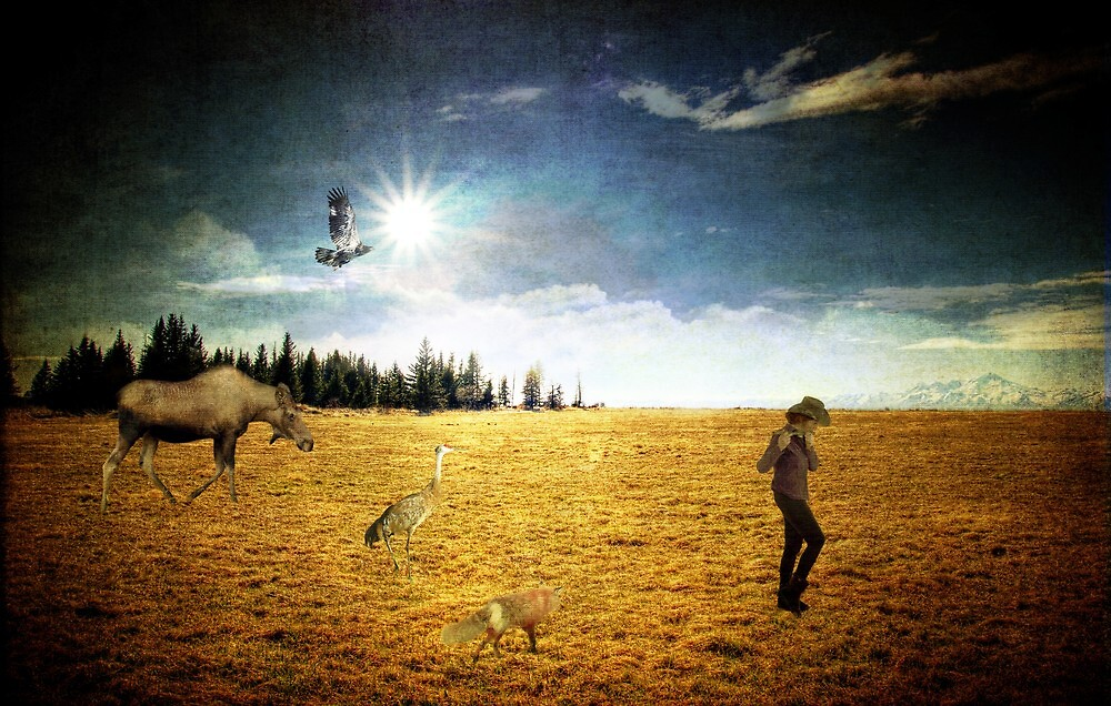 Follow Your Dreams by mcornelius
