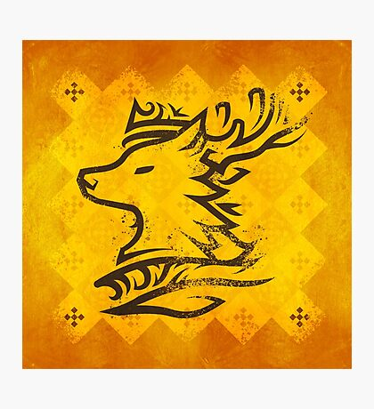 House Baratheon - Game of Thrones Photographic Print