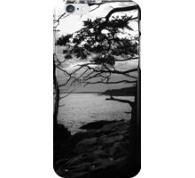 Acadia Silhouettes iPhone Case/Skin