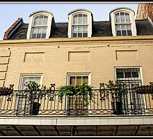 French Quarter Windows in Pale Yellow by Mikell Herrick